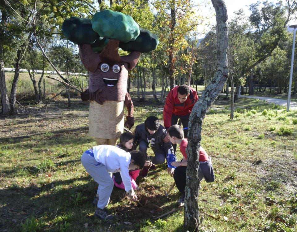 Plantação de sobreiros na Lousã, no Dia da Floresta Autóctone pelo ClimAgir da CIM Região de Coimbra
